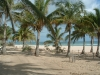 barra-beach-with-palm-trees2